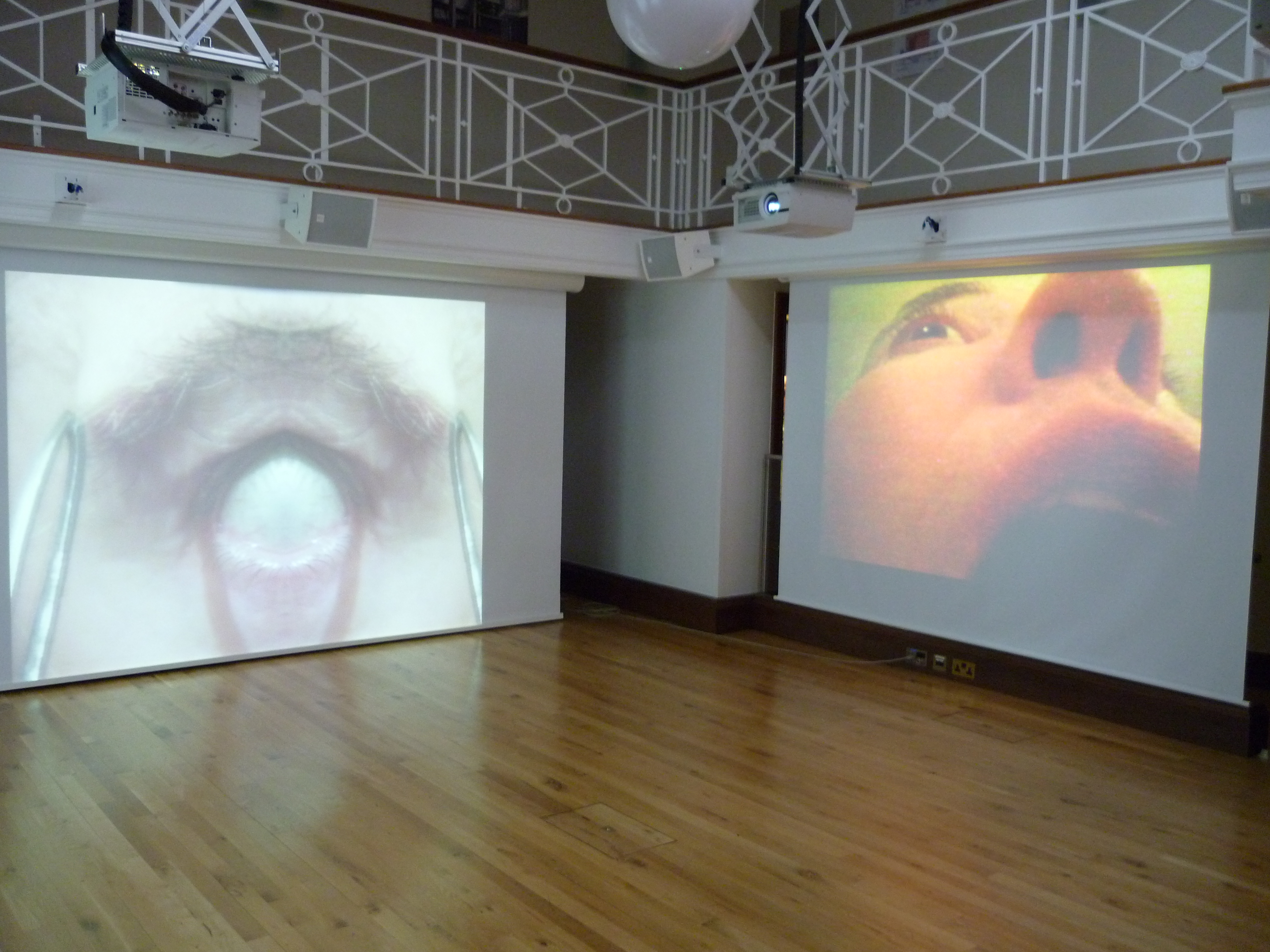 Oily Anatomies and Toxic Landscapes (Part 1) | Site, Performance ...